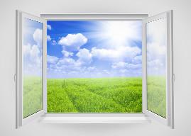 Clean Open Window - TCA