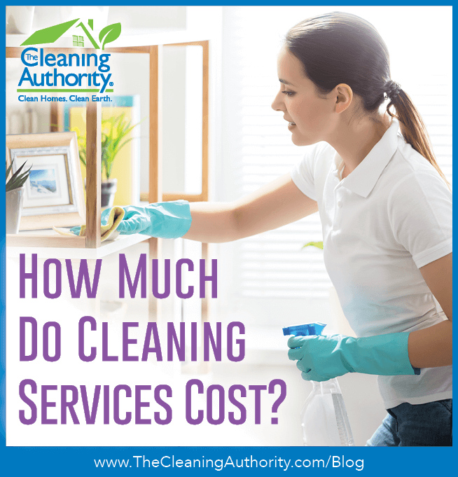 How much do cleaning services cost?