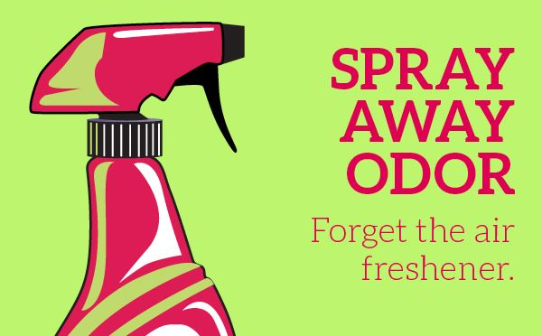 Infographic: Spray Away Odor