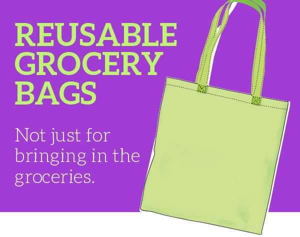 Infographic: Reusable Grocery Bags